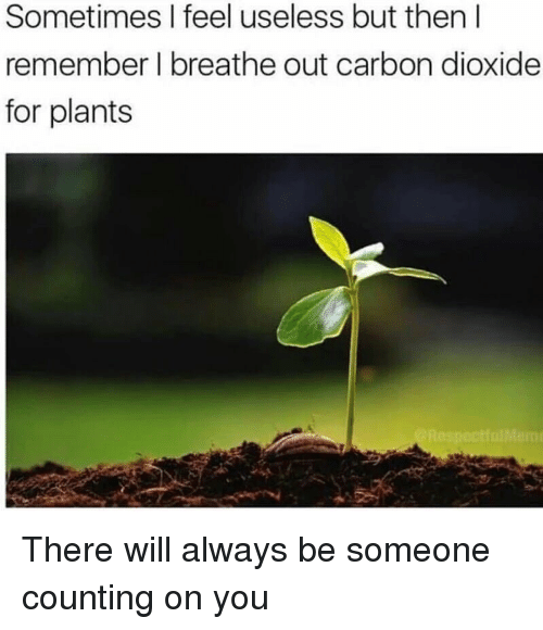 Carbon, Will, and Remember: Sometimes I feel useless but then l  remember l breathe out carbon dioxide  for plants <p>There will always be someone counting on you</p>