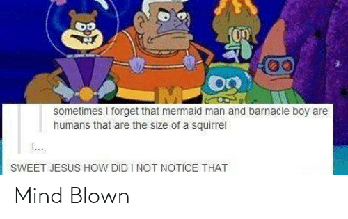 Forget That: sometimes I forget that mermaid man and barnacle boy are  humans that are the size of a squirrel  SWEET JESUS HOW DID I NOT NOTICE THAT Mind Blown