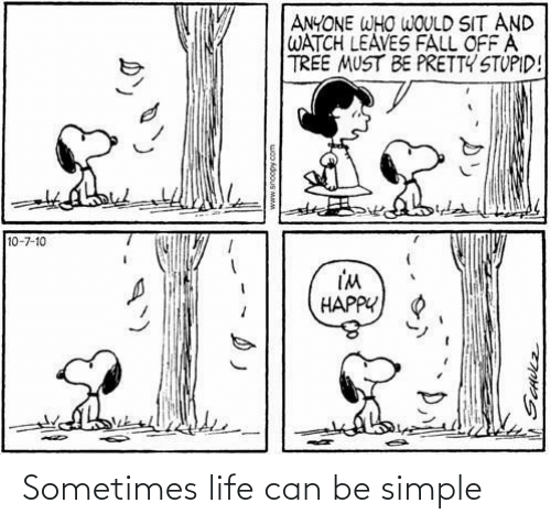 sometimes: Sometimes life can be simple