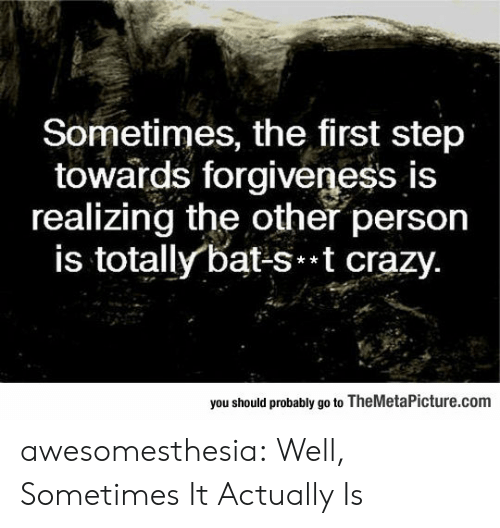 Crazy, Tumblr, and Blog: Sometimes, the first step  towards forgiveness is  realizing the other person  is totally bat-st crazy.  you should probably go to TheMetaPicture.com awesomesthesia:  Well, Sometimes It Actually Is