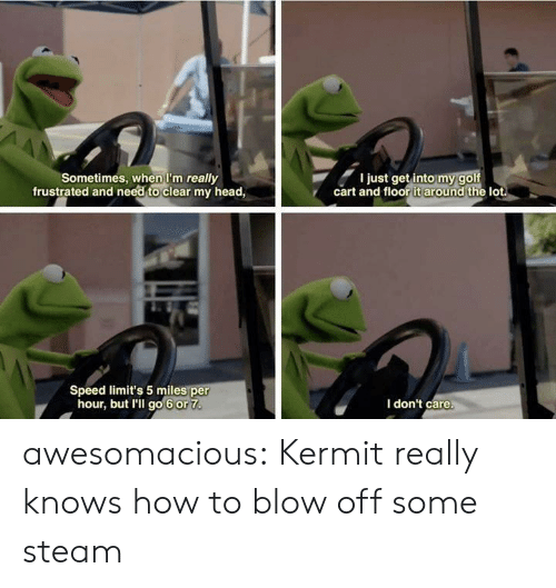 kermit: Sometimes, when I'm really  frustrated and need to clear my head,  I just get into my golf  cart and floor it around the lot  Speed limit's 5 miles per  hour, but I'll go 6 or 7  I don't care. awesomacious:  Kermit really knows how to blow off some steam