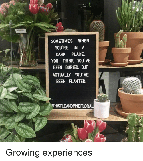 Been, Dark, and Buried: SOMETIMES WHEN  YOU'RE IN A  DARK PLACE.  YOU THINK YOU'VE  BEEN BURIED, BUT  ACTUALLY YOU VE  BEEN PLANTED.  THISTLEANDPINEFLORA