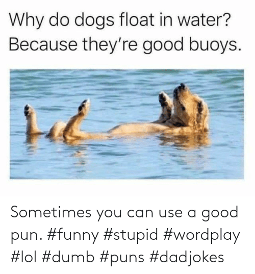 Dumb: Sometimes you can use a good pun. #funny #stupid #wordplay #lol #dumb #puns #dadjokes