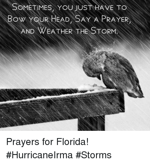bowed: SOMETIMES, YOU JUST HAVE TO  BOW YOUR HEAD, SAY A PRAYER  AND WEA THER THE STORM Prayers for Florida!  #HurricaneIrma #Storms