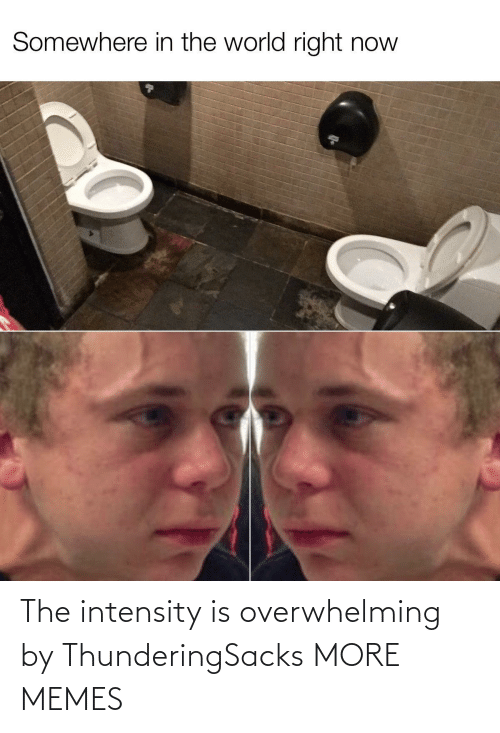 intensity: Somewhere in the world right now The intensity is overwhelming by ThunderingSacks MORE MEMES