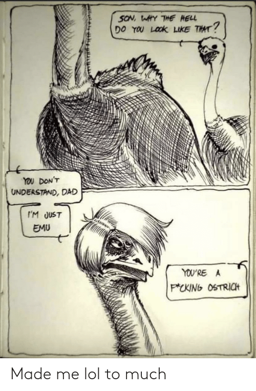 Hell: SON, WAHY THE HELL  DO YOU LOOK LIKE THAT?  YOU DON'T  UNDERSTAND, DAD  I'M JUST  EMU  YOU'RE A  P*CKING OSTRICH Made me lol to much