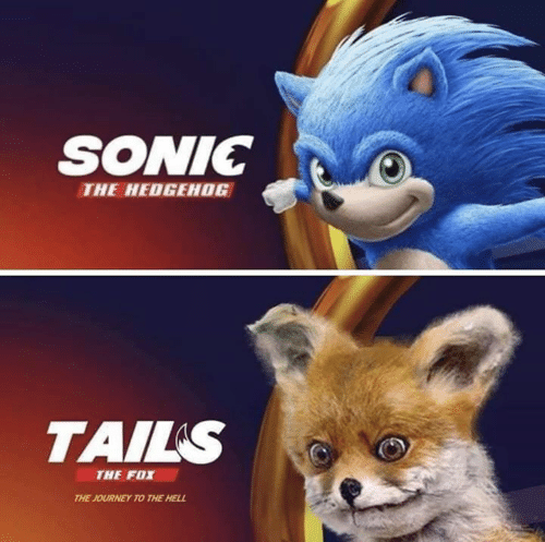 Sonic the Hedgehog: SONIC  THE HEDGEHOG  TAILS  THE FOX  THE JOURNEY TO THE HELL