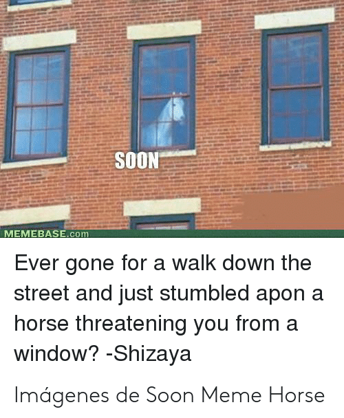 Meme Horse: SOON  MEMEBASE.com  Ever gone for a walk down the  street and just stumbled apon a  horse threatening you from a  window? -Shizaya Imágenes de Soon Meme Horse