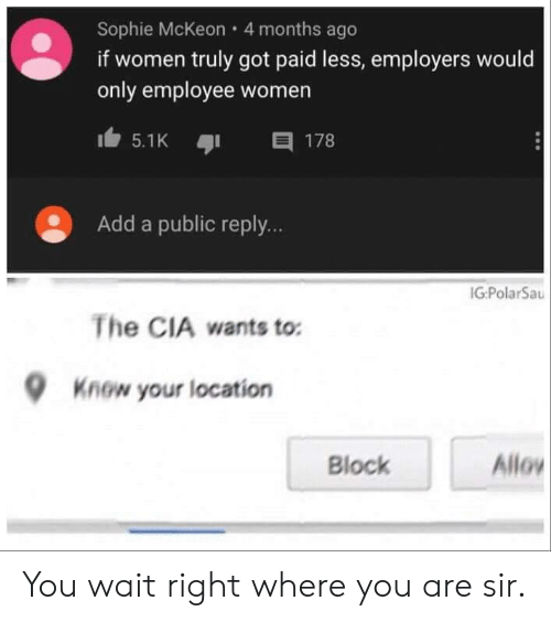cia: Sophie McKeon 4 months ago  if women truly got paid less, employers would  only employee women  目 178  5.1K  Add a public reply...  IG:PolarSau  The CIA wants to:  Know your location  Allo  Block You wait right where you are sir.