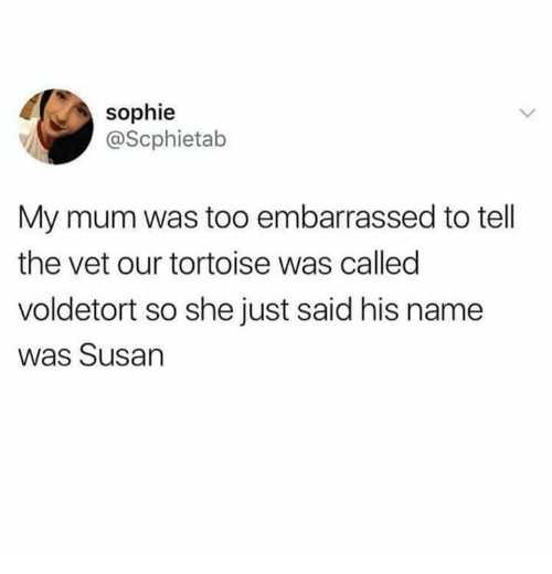 vetting: sophie  @Scphietab  My mum was too embarrassed to tell  the vet our tortoise was called  voldetort so she just said his name  was Susan