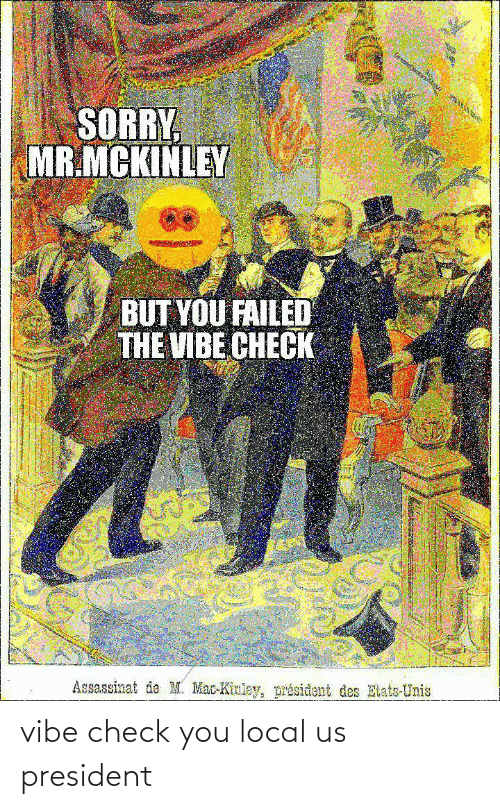 Sorry, The Vibe, and Mac: SORRY  MR.MCKINLEY  BUT YOU FAILED  THE VIBE CHECK  Assassinat de M. Mac-Kinley, président des Etats-Unis vibe check you local us president
