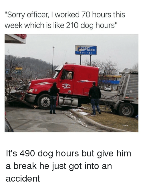 """Offical: """"Sorry officer, I worked 70 hours this  week which is like 210 dog hours""""  iver  side It's 490 dog hours but give him a break he just got into an accident"""