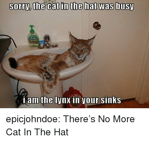 sinks: sorry,  the  cat  in  the  hat  was  busy  Lam the lynx in your sinKS epicjohndoe:  There's No More Cat In The Hat
