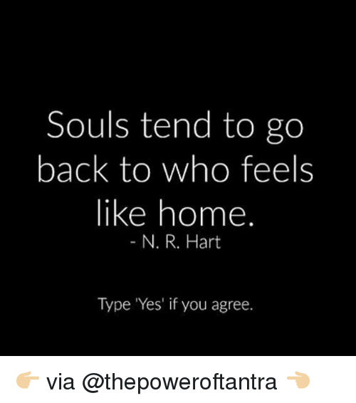feels like home: Souls tend to go  back to who feels  like home  N. R. Hart  Type Yes' if you agree. 👉🏼 via @thepoweroftantra 👈🏼