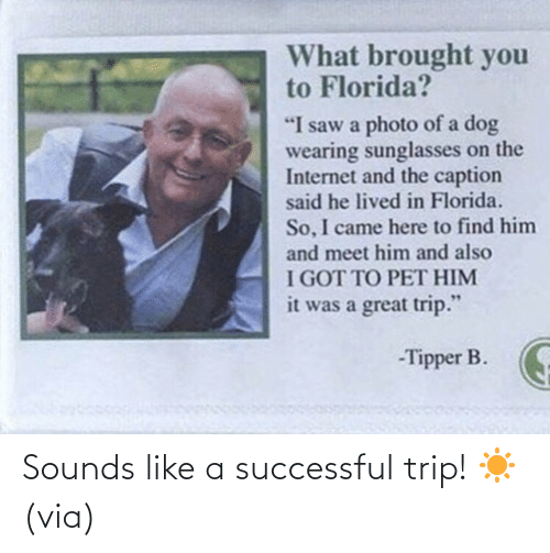trip: Sounds like a successful trip! ☀️ (via)