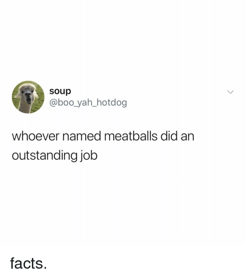 hotdog: soup  @boo_yah_hotdog  whoever named meatballs did an  outstanding job facts.