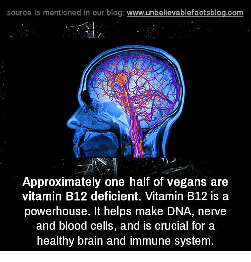 b12: source Is mentioned In our blog  www.unbelievablefactsblog.com  Approximately one half of vegans are  vitamin B12 deficient. Vitamin B12 is a  powerhouse. It helps make DNA, nerve  and blood cells, and is crucial for a  healthy brain and immune system.