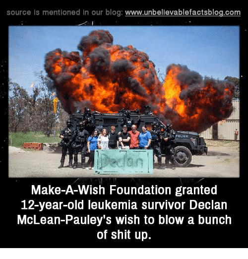 mclean: source Is mentioned In our blog  www.unbelievablefactsblog.com  Make-A-Wish Foundation granted  12-year-old leukemia Survivor Declan  McLean-Pauley's wish to blow a bunch  of shit up.