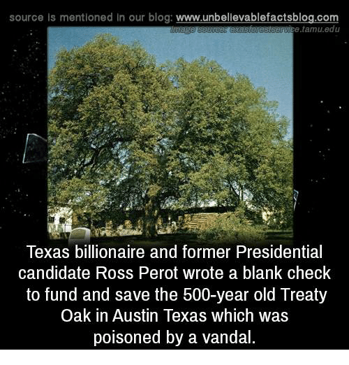 austin texas: source Is mentioned In our blog  www.unbelievablefactsblog.com  rastservice tamu.edu  Texas billionaire and former Presidential  candidate Ross Perot wrote a blank check  to fund and save the 500-year old Treaty  Oak in Austin Texas which was  poisoned by a vandal.