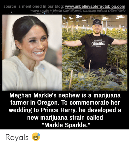 """Ireland: source is mentioned in our blog: www.unbelilevablefactsblog.co  Image credit; Michelle Day/Dilymail, Northern Ireland Office/Flick  CANNABI  Meghan Markle's nephew is a marijuana  farmer in Oregon. To commemorate her  wedding to Prince Harry, he developed a  new marijuana strain called  """"Markle Sparkle."""" Royals 😅"""