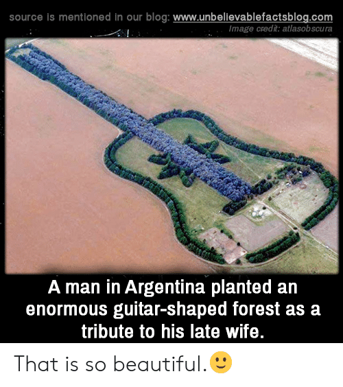 enormous: source is mentioned in our blog: www.unbellevablefactsblog.com  Image credit: atlasobscura  A man in Argentina planted an  enormous guitar-shaped forest as a  tribute to his late wife. That is so beautiful.🙂