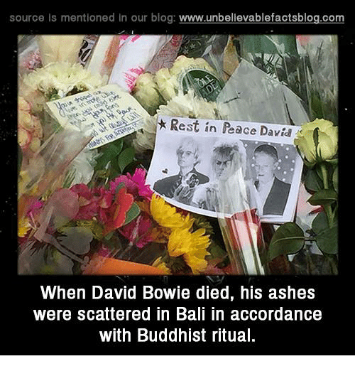 accordance: source is mentioned in our blog: www.unbellevablefactsblog.com  Rest in Peace Davi  When David Bowie died, his ashes  were scattered in Bali in accordance  with Buddhist ritua