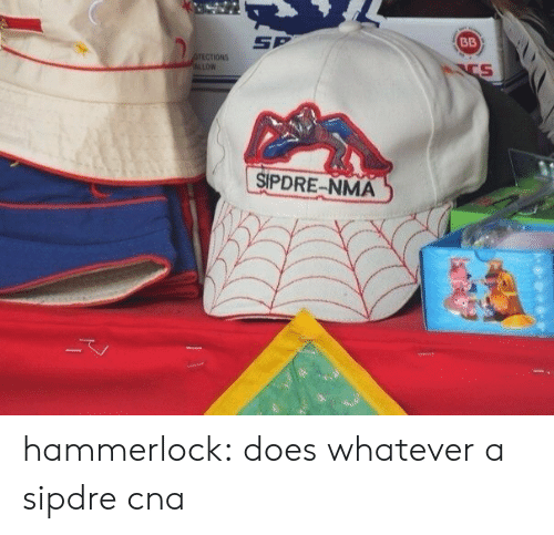Target, Tumblr, and Blog: SP  SIPDRE-NMA hammerlock: does whatever a sipdre cna