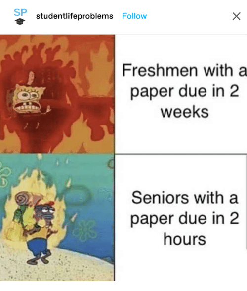 freshmen: SP  studentlifeproblems Follow  Freshmen with a  paper due in 2  weeks  Seniors with a  paper due in 2  hours