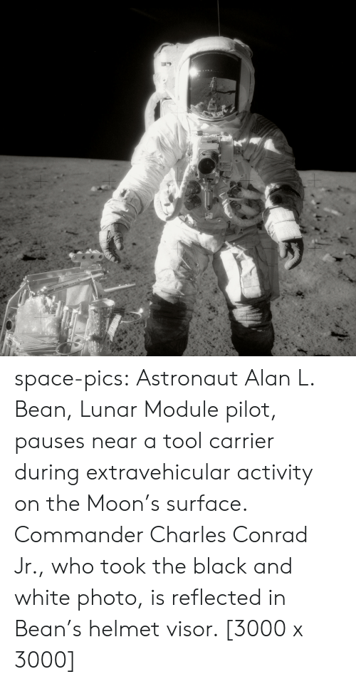 A Tool: space-pics:  Astronaut Alan L. Bean, Lunar Module pilot, pauses near a tool carrier during extravehicular activity on the Moon's surface. Commander Charles Conrad Jr., who took the black and white photo, is reflected in Bean's helmet visor. [3000 x 3000]