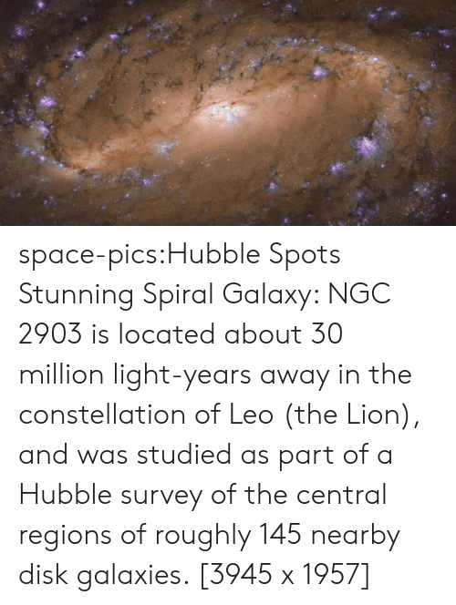 Tumblr, Blog, and Lion: space-pics:Hubble Spots Stunning Spiral Galaxy: NGC 2903 is located about 30 million light-years away in the constellation of Leo (the Lion), and was studied as part of a Hubble survey of the central regions of roughly 145 nearby disk galaxies. [3945 x 1957]