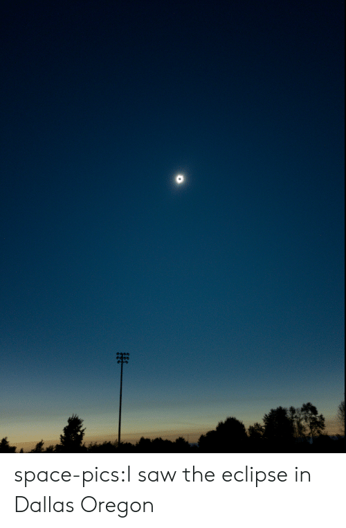 Saw, Tumblr, and Blog: space-pics:I saw the eclipse in Dallas Oregon