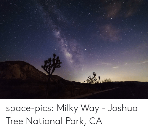 Tumblr, Blog, and Space: space-pics:  Milky Way - Joshua Tree National Park, CA