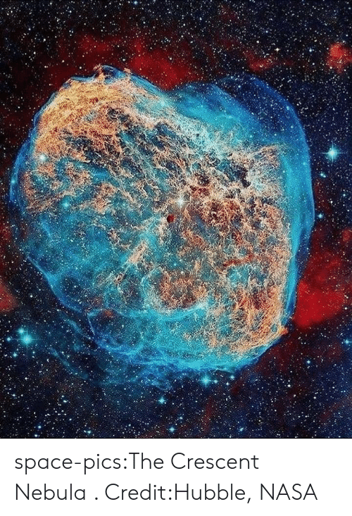 Nasa, Tumblr, and Blog: space-pics:The Crescent Nebula . Credit:Hubble, NASA