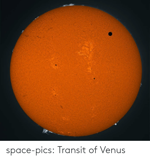 Tumblr, Blog, and Space: space-pics:  Transit of Venus