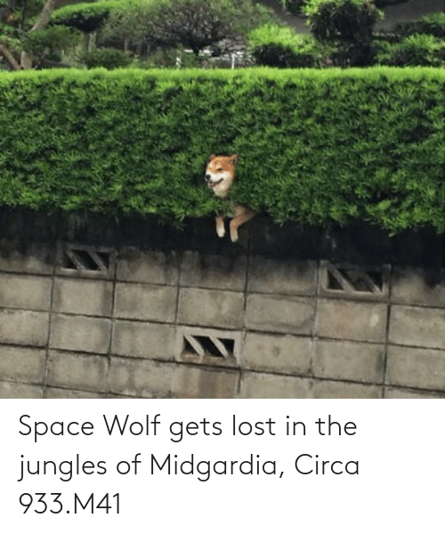 Jungles: Space Wolf gets lost in the jungles of Midgardia, Circa 933.M41