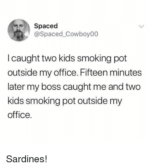 spaced: Spaced  @Spaced_Cowboy00  I caught two kids smoking pot  outside my office. Fifteen minutes  later my boss caught me and two  kids smoking pot outside my  office. Sardines!