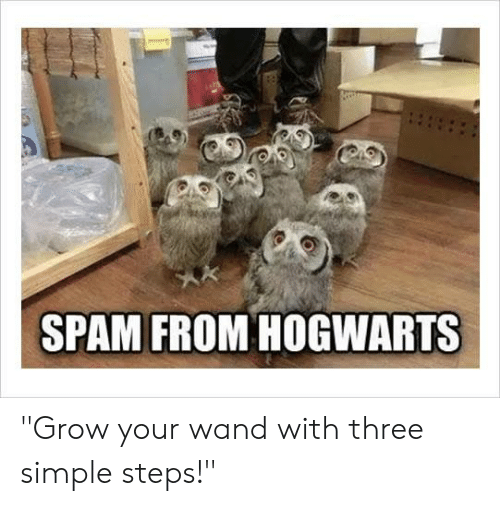 """Dank, 🤖, and Simple: SPAM FROM HOGWARTS """"Grow your wand with three simple steps!"""""""