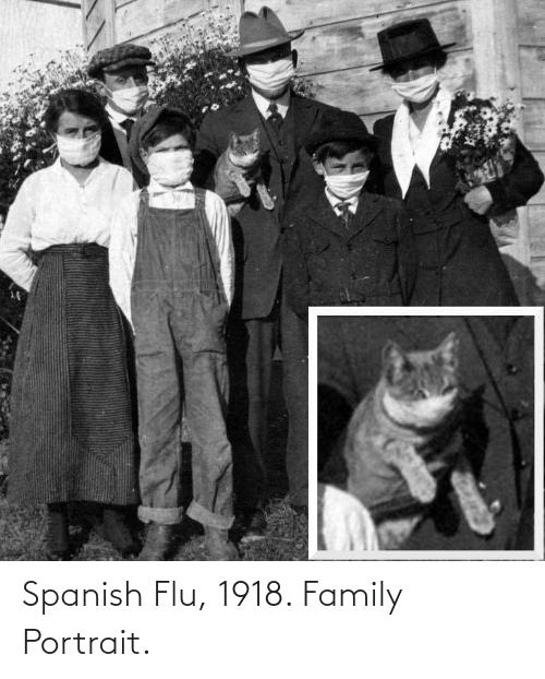 Spanish: Spanish Flu, 1918. Family Portrait.