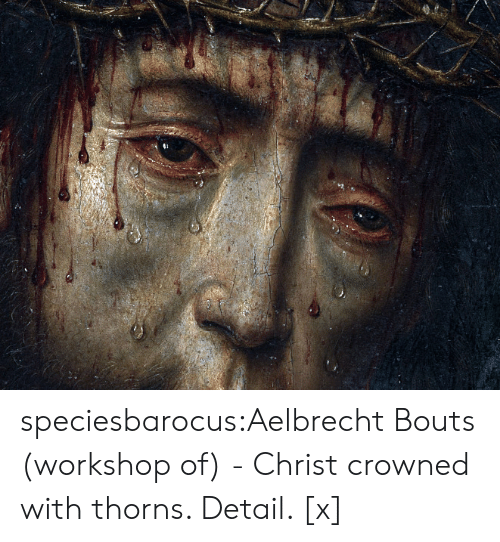 Tumblr, Wikipedia, and Blog: speciesbarocus:Aelbrecht Bouts (workshop of) - Christ crowned with thorns. Detail. [x]