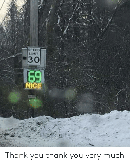 Thank You, Nice, and Speed: SPEED  LIMIT  #30  69  NICE Thank you thank you very much