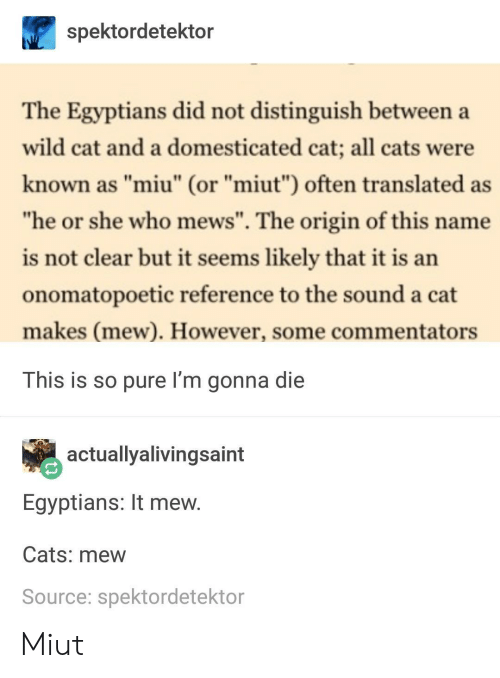 """Im Gonna Die: spektordetektor  The Egyptians did not distinguish between a  wild cat and a domesticated cat; all cats were  known as """"miu"""" (or """"miut"""") often translated as  he or she who mews"""". The origin of this name  is not clear but it seems likely that it is an  onomatopoetic reference to the sound a cat  makes (mew). However, some commentators  This is so pure I'm gonna die  actuallyalivingsaint  Egyptians: It mew  Cats: mew  Source: spektordetektor Miut"""
