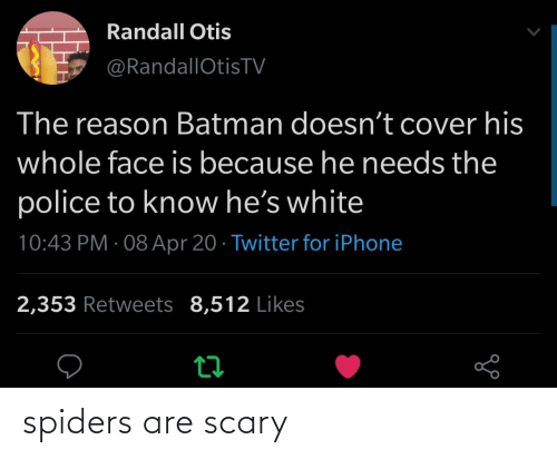 Spiders: spiders are scary
