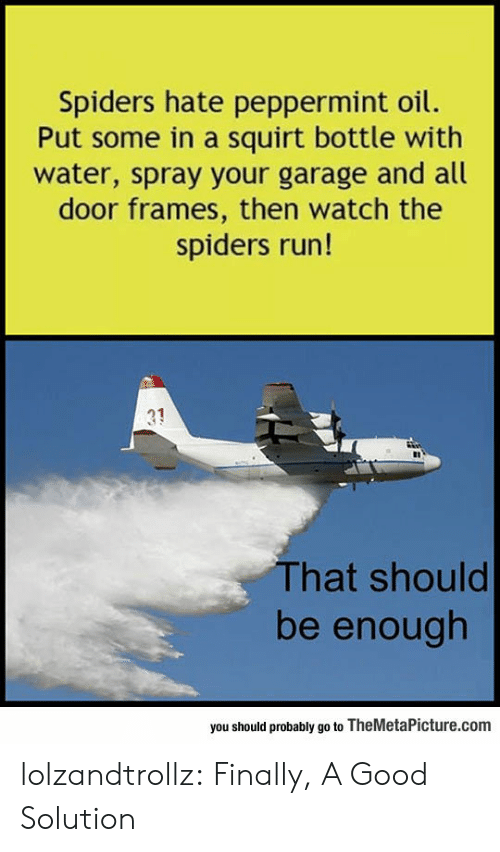 Spiders: Spiders hate peppermint oil.  Put some in a squirt bottle with  water, spray your garage and all  door frames, then watch the  spiders run!  31  That should  be enough  you should probably go to TheMetaPicture.com lolzandtrollz:  Finally, A Good Solution