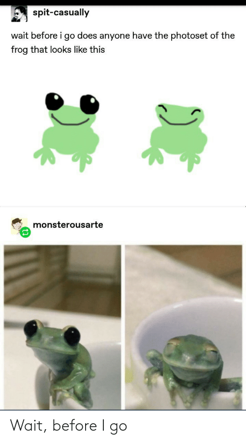 Before I: spit-casually  wait before i go does anyone have the photoset of the  frog that looks like this  monsterousarte Wait, before I go