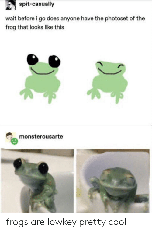 Before I: spit-casually  wait before i go does anyone have the photoset of the  frog that looks like this  monsterousarte frogs are lowkey pretty cool
