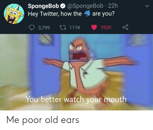 SpongeBob, Twitter, and Watch: @SpongeBob 22h  SpongeBob  Hey Twitter, how theare you?  L 111K  392K  3,799  You better watch your mouth Me poor old ears