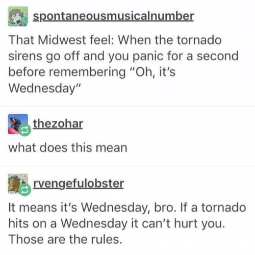 """Mean, Tornado, and Wednesday: spontaneousmusicalnumber  That Midwest feel: When the tornado  sirens go off and you panic for a second  before remembering """"Oh, it's  Wednesday""""  thezohar  what does this mean  rvengefulobster  It means it's Wednesday, bro. If a tornado  hits on a Wednesday it can't hurt you  Those are the rules."""