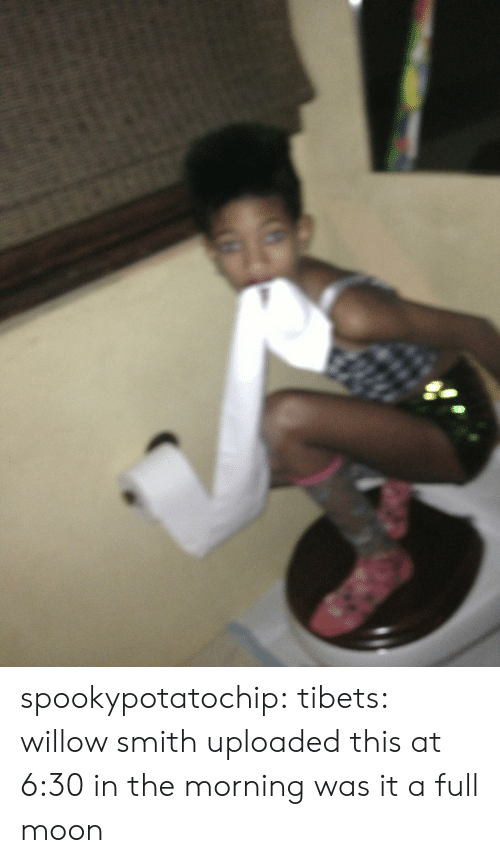willow smith: spookypotatochip:  tibets:  willow smith uploaded this at 6:30 in the morning  was it a full moon