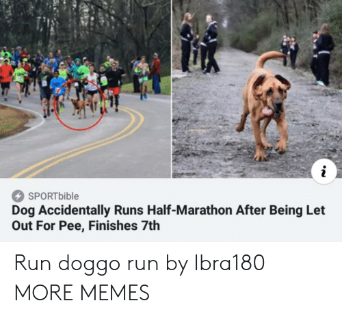 Let Out: SPORTbible  Dog Accidentally Runs Half-Marathon After Being Let  Out For Pee, Finishes 7th Run doggo run by Ibra180 MORE MEMES