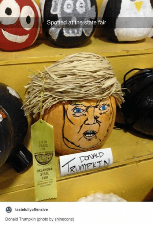 state fair: Spotted at the state fair  FIFTH  PLACE  STATE  FAIR  to  tastefully offensive  Donald Trumpkin (photo by shinecone)